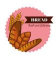 bread bakery design vector image vector image