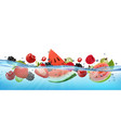 fresh watermelon and different berries and fruit vector image vector image