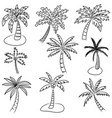 set hand drawn coconut tree isolated on white vector image