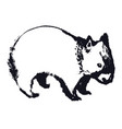 wombat sketch style hand drawn vector image