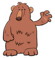 bear character cartoon vector image