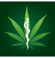 cannabis marijuana on medical prescription vector image vector image
