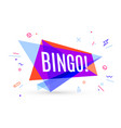 colorful banner with text bingo vector image vector image