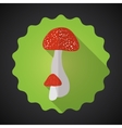 Mushrooms Bad Habits Flat icon background vector image vector image