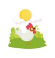 rooster bird flower grass sun farm animal cartoon vector image vector image