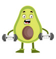 avocado lifting weights on white background vector image vector image