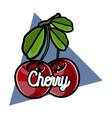 color vintage fruit emblem vector image