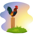 cute rooster crowing on fence vector image vector image