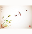flying swallow birds and green grass traditional vector image vector image