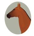 Golden akhal-teke stallion portrait in the frame vector image