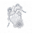 human flora heart hipster tattoo art medical vector image vector image