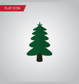 isolated spruce flat icon park element can vector image