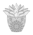 Zentangle Succulent Cactus Hand drawn outline vector image