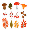 autumn leaves mushrooms and berries isolated on vector image