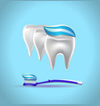 banner toothpaste teeth vector image vector image