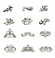 Calligraphic decorative elements and Ornaments in vector image vector image