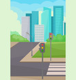 city street with road crosswalk and traffic vector image vector image