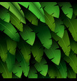 exotic pattern with tropical leaves banana on a bl vector image vector image