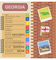 Georgia infographics statistical data sights vector image