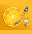 lp vinyl record music disc like a citrus orange vector image vector image