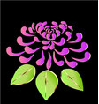 pink lotus flower on black background icon vector image vector image