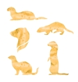 watercolor silhouettes of a ferret vector image
