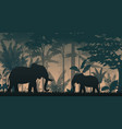 animals silhouette at the inside forest vector image