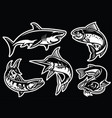 collection of fish in black and white vector image