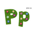 letter pp with a texture of grass and flowers vector image vector image