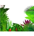 Nature background forest vector image vector image