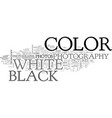 which shot color or black and white text word vector image vector image