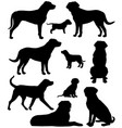 greater swiss mountain dog silhouette vector image vector image