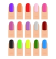 nail polish in different hues vector image