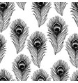 peacock feather sketch seamless pattern vector image