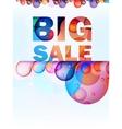 Abstract splash Big Sale card EPS10 vector image vector image