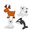 adorable baanimals from cold countries vector image vector image