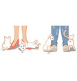 cute cat rubbing against owner legs and feet vector image vector image