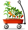 Fresh vegetables and fruits in the cart vector image vector image