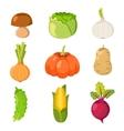 Healty food cartoon representing set vector image
