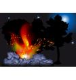 night bonfire vector image