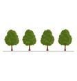 set of city tree bush hedge decoration elements vector image vector image
