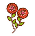 two flowers decorative spring image vector image vector image