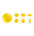 bitcoin gold coin icon set in different angles vector image