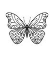 butterfly hand drawn doodle vector image