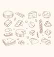 drawn cheese gouda parmesan mozzarella delicious vector image vector image