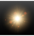 Golden Glow light effect vector image vector image