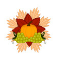 pumpkin with leaves and grapes thanksgiving vector image vector image