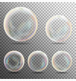 realistic soap bubbles on transparent background vector image vector image