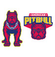 set muscle pitbull dog in sport mascot style vector image vector image