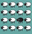 Sheep concepts vector image